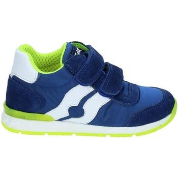Schoenen Kinderen Lage sneakers Falcotto 2012380-01-9105 Bleu