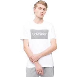 Textiel Heren T-shirts korte mouwen Calvin Klein Jeans K10K103654 Wit