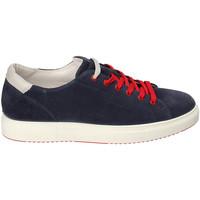 Schoenen Heren Lage sneakers IgI&CO 3132711 Blauw