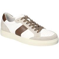 Schoenen Heren Lage sneakers IgI&CO 3132922 Wit