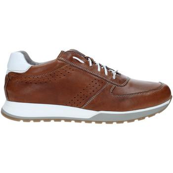 Schoenen Heren Lage sneakers Rogers 5065 Bruin