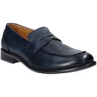 Schoenen Heren Mocassins Exton 3106 Blauw
