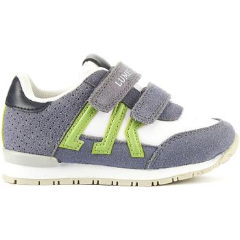 Schoenen Kinderen Lage sneakers Lumberjack SB47505 002 M94 Gris
