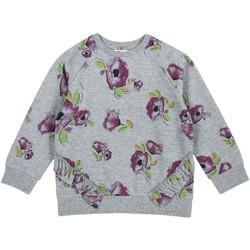 Textiel Kinderen Sweaters / Sweatshirts Chicco 09069347000000 Grijs