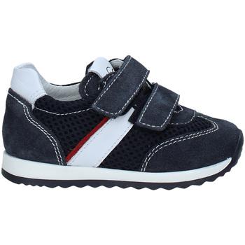 Schoenen Kinderen Lage sneakers Nero Giardini P923452M Bleu