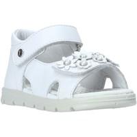 Schoenen Meisjes Sandalen / Open schoenen Falcotto 1500774-01-0N01 Wit