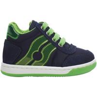 Schoenen Kinderen Hoge sneakers Falcotto 2013553-02-1C38 Bleu