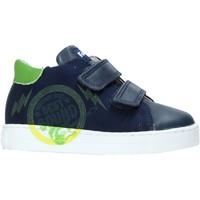 Schoenen Kinderen Lage sneakers Falcotto 2013622-01-1C38 Bleu
