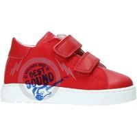 Schoenen Kinderen Lage sneakers Falcotto 2013622-01-1H02 Rouge