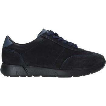 Schoenen Heren Sneakers Valleverde 49838 Bleu