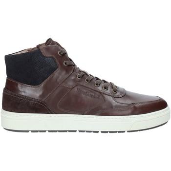 Schoenen Heren Hoge sneakers Nero Giardini A901260U Marron