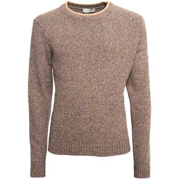 Textiel Heren Truien Nero Giardini A974510U Beige