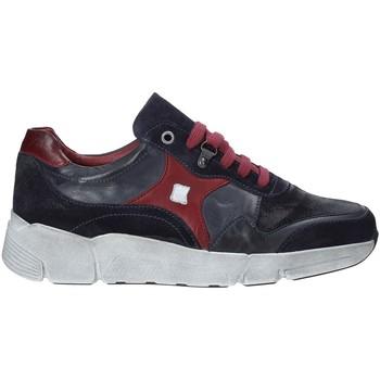 Schoenen Heren Lage sneakers Exton 360 Blauw