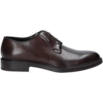 Schoenen Heren Derby Rogers 1019_4 Bruin