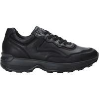 Schoenen Heren Lage sneakers IgI&CO 4114300 Zwart