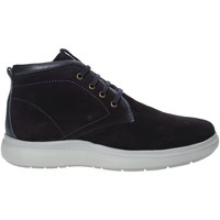 Schoenen Heren Hoge sneakers Impronte IM92016A Blauw
