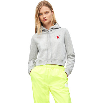 Textiel Dames Sweaters / Sweatshirts Calvin Klein Jeans J20J210601 Grijs