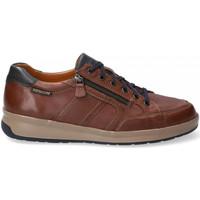 Schoenen Heren Lage sneakers Mephisto LISANDRO W Brown
