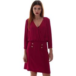 Textiel Dames Korte jurken Gaudi 921FD15037 Roze