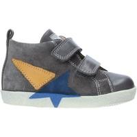 Schoenen Kinderen Hoge sneakers Falcotto 2014042 01 Gris