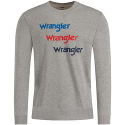 Textiel Heren Sweaters / Sweatshirts Wrangler W6A5HAX37 Gris