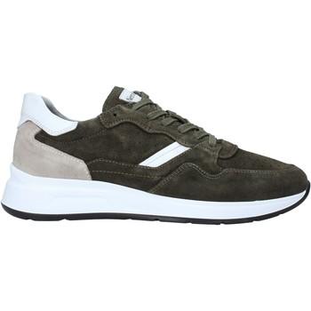 Schoenen Heren Lage sneakers Nero Giardini E001491U Vert