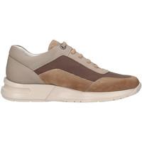 Schoenen Heren Lage sneakers CallagHan 91311 Beige