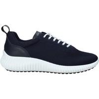 Schoenen Heren Lage sneakers IgI&CO 5123400 Bleu