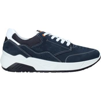 Schoenen Heren Lage sneakers IgI&CO 5132033 Blauw