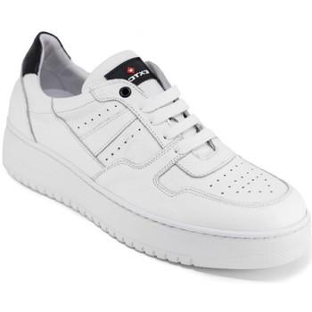 Schoenen Heren Lage sneakers Exton 427 Wit