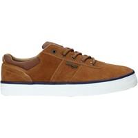 Schoenen Heren Lage sneakers Wrangler WM01004A Bruin