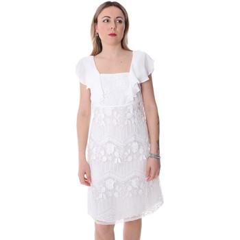 Textiel Dames Korte jurken Fracomina FR20SP584 Wit