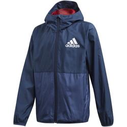 Textiel Kinderen Wind jackets adidas Originals FM6447 Blauw