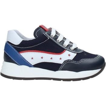 Schoenen Kinderen Lage sneakers Nero Giardini E023820M Bleu