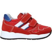 Schoenen Kinderen Lage sneakers Nero Giardini E023830M Rood