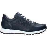 Schoenen Kinderen Lage sneakers Nero Giardini E033810M Bleu