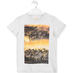 Textiel Kinderen T-shirts korte mouwen Losan 013-1017AL Wit