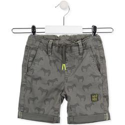 Textiel Kinderen Korte broeken / Bermuda's Losan 015-9006AL Groen