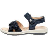 Schoenen Meisjes Sandalen / Open schoenen Naturino 0502724 04 Blauw