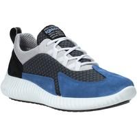 Schoenen Heren Lage sneakers IgI&CO 5123611 Bleu