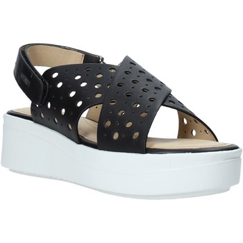Schoenen Dames Sandalen / Open schoenen Impronte IL01525A Zwart