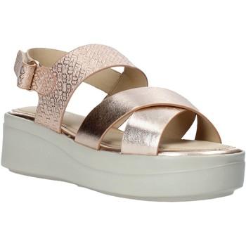 Schoenen Dames Sandalen / Open schoenen Impronte IL01548A Zwart