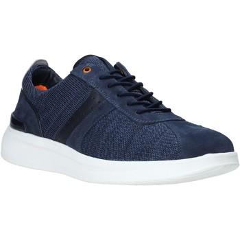 Schoenen Heren Lage sneakers Impronte IM01023A Blauw