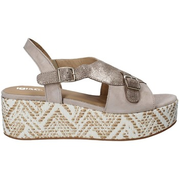Schoenen Dames Sandalen / Open schoenen IgI&CO 1188 Grijs