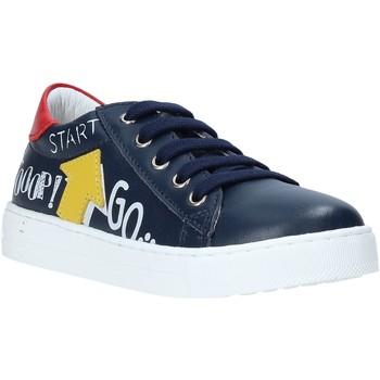 Schoenen Kinderen Lage sneakers Falcotto 2014628 01 Bleu
