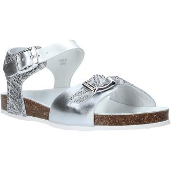 Schoenen Kinderen Sandalen / Open schoenen Grunland SB1500 Zilver