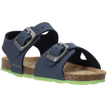 Schoenen Kinderen Sandalen / Open schoenen Grunland SB0413 Blauw