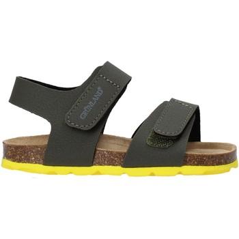 Schoenen Kinderen Sandalen / Open schoenen Grunland SB0094 Groen