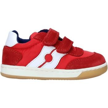 Schoenen Kinderen Lage sneakers Falcotto 2014666 01 Rouge