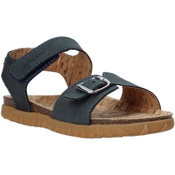 Schoenen Kinderen Sandalen / Open schoenen Grunland SB1565 Blauw